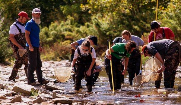 Featured Program: Fisheries & Wildlife Science Image